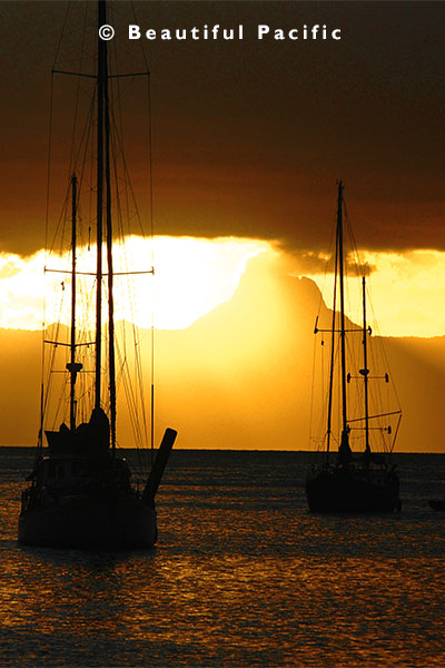 view of yachts at sunset in savusavu harbour