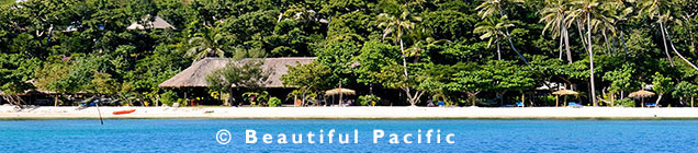 picture of Nanuya Island Resort beach