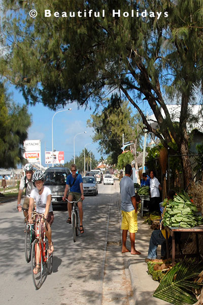tourists cycling along vuna road