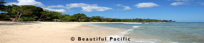 picture of Eratap Beach Resort, Efate Island